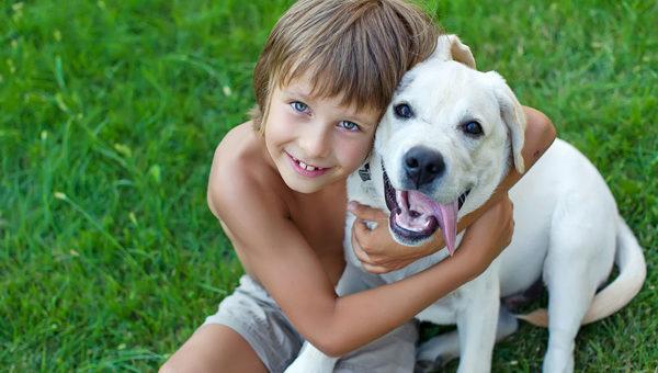 Собаки помогают воспитывать детей!