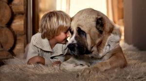 Собаки помогают воспитывать детей