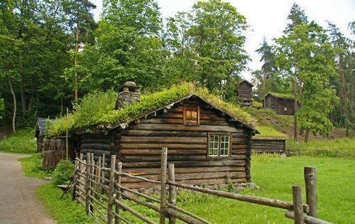 Особенности крыши из дерна